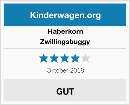 Haberkorn Zwillingsbuggy Test